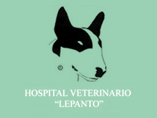 Hospital Veterinario Lepanto