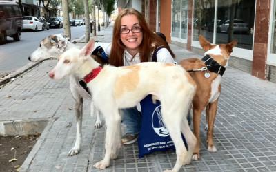 Paco, Sofía y Joy