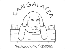 Residencia Canina Can Galatea