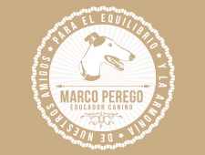 Marco Perego. Educador Canino