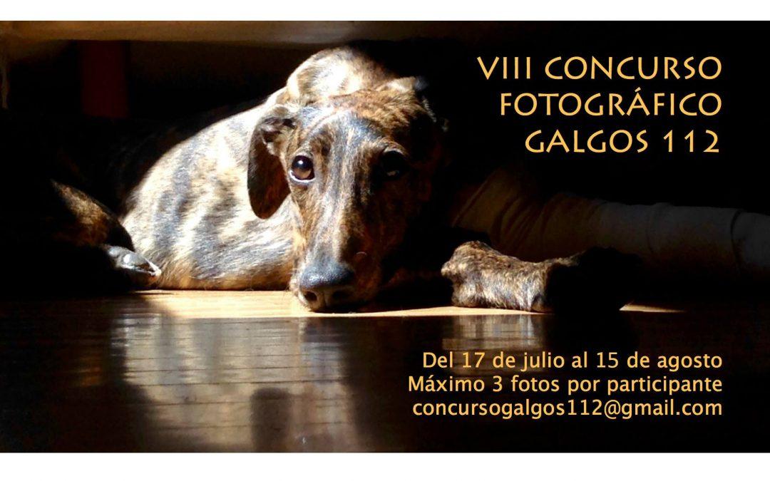 Fotos presentadas al VIII Concurso Fotográfico de Galgos 112. ¡Socios, a votar!